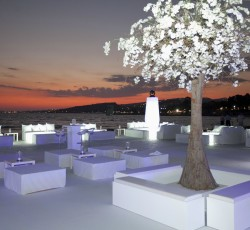 Weddings and Engagements by Arc Design Events
